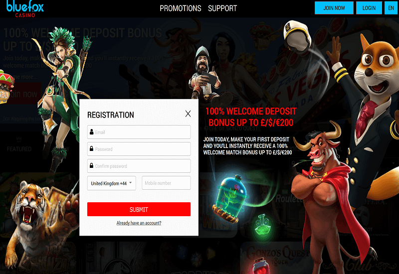 Blue Fox Casino Home Page