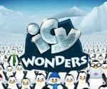 Icy Wonders Video Slot Game