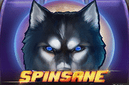 Spinsane  Video Slot Game