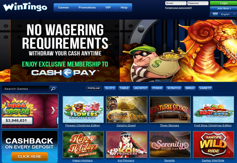 Win Tingo Casino Home Page