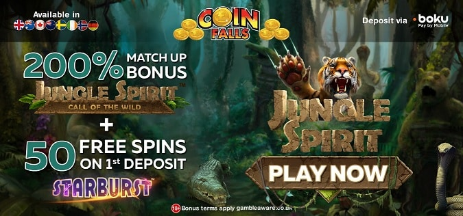 Coin Falls promotion