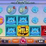 Copy Cats – New Video Slot (23rd May 2017)